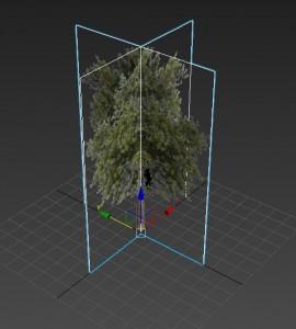 arbre-plane